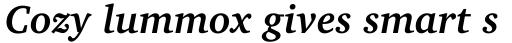 Charter Bold Italic sample