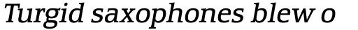 Equestrienne RR Book Italic sample