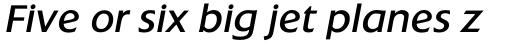 Extension RR Book Italic sample