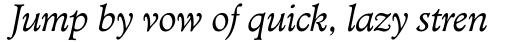 TC Administer RR Book Italic sample