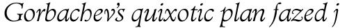 TC Administer RR Light Italic sample