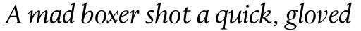 Leighton RR Light Italic sample