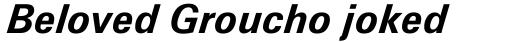 Zurich Bold Italic sample