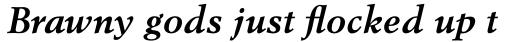 Berstrom DT Bold Italic sample