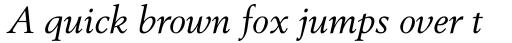 Berstrom DT Italic sample