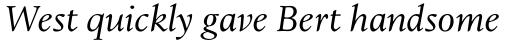 Leiden DT Italic sample