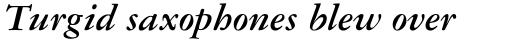 Garamond DT Bold Italic sample