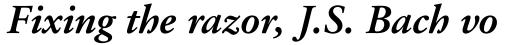 Garamond 96 DT Bold Italic sample