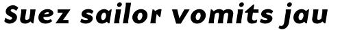 Base 9 Sans Bold Italic sample