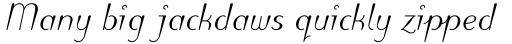 Puritas Medium Italic sample