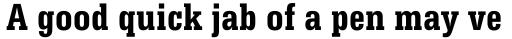 Serifa Bold Condensed sample