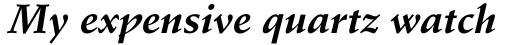 Schneidler Bold Italic sample