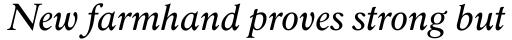 Robertson Italic sample