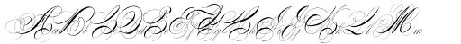 Albion Signature