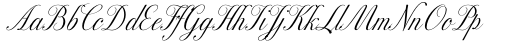 Excelsor Script